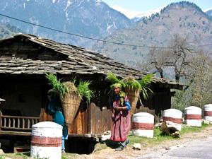Тур в Индию. Малый Тибет. Ладак