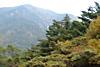 Тур в Южную Корею. Знакомство с Кореей: Сеул – Кенджу – Пусан