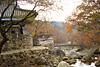 Тур в Южную Корею. Цветение сакуры в Южной Корее