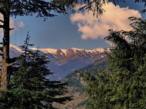Тур в Индию. Гималаи. Наггар