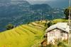 Индия. Сказка Восточной Индии: Сикким и Орисса