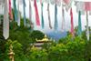 Индия. Тур в Индию. Тибетская медицина