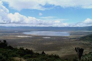 Тур в Танзанию. Сафари