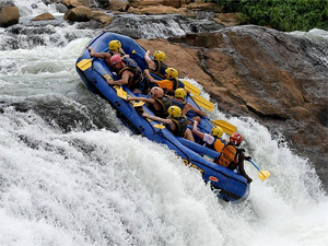 Тур в Уганду. Африка