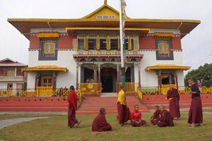 Тур в Индию, Гималаи