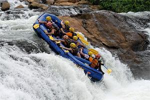 Тур в Уганду, Руанду и Конго